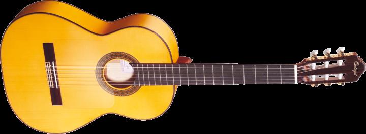 Favori Acheter sa première guitare - 1ère partie • EasyGuitar ZL97